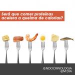 proteinas queima calorias